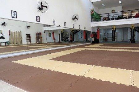 Academia Dragão Chinês Kung Fu -