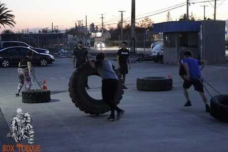 BOX TORQUE Gym -