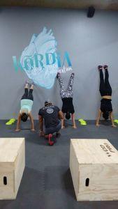 KORDIA Mindful Bodywork