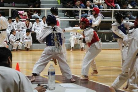 Escuela Taekwondo Kyeongju Onofre Tultepec BB