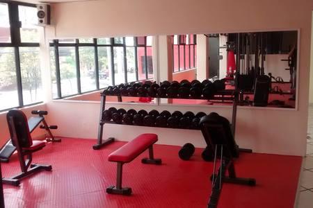 Lobo style Gym -