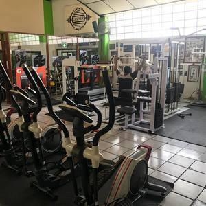 Gerner Gym -