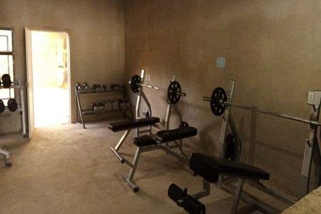 Bull Gym -