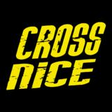 Cross Nice - logo
