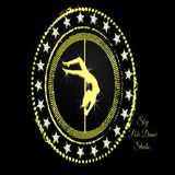 Sky Pole Dance Studio - logo