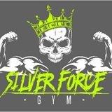 Silver Force Gym - logo
