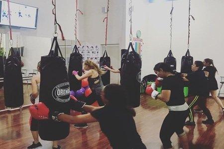 45' Vifit Gym -