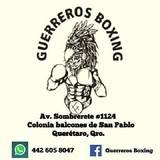 Guerreiros Boxing - logo
