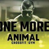 Ánimal Elite Training Gym & Crossfit - logo