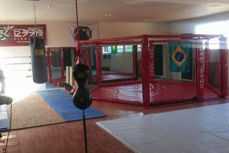 CASTA MMA GYM -