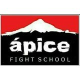 Ápice Fight School - logo