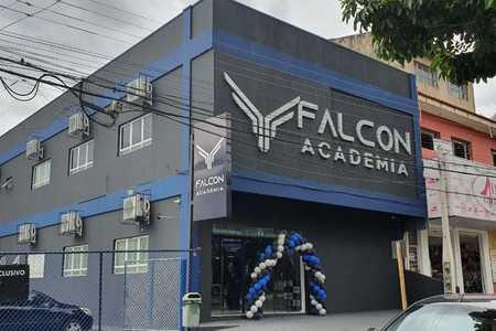 Falcon Academia -
