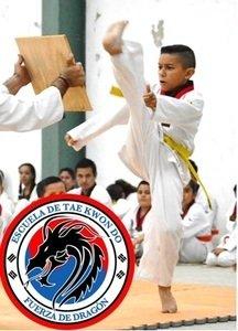 Escuela de Taekwondo fuerza de dragón -