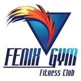 Fenix Gym Veracruz - logo
