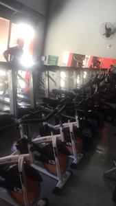 Shape Fitness Academia