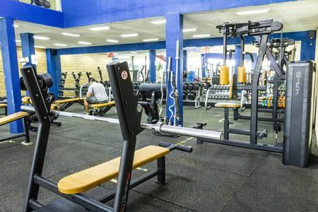 Peralta Fitness - Real Parque