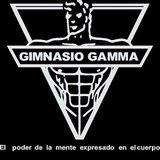 Gimnasio Gamma - logo