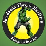 Academia Flayan - logo
