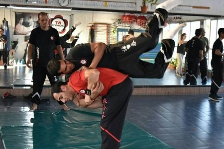 WT Kung Fu Mercedes