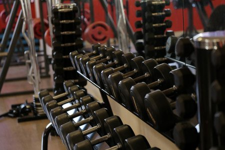 Go Gym Academia