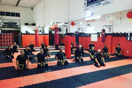 Instituto Panthers de Artes Marciais -