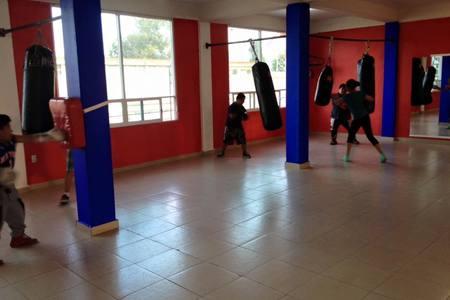 Oso Team Boxing Gym