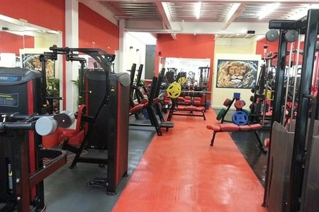 Fitness Lyon's Gym