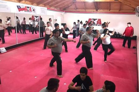 Ata Bekho Power Academy Quilicura