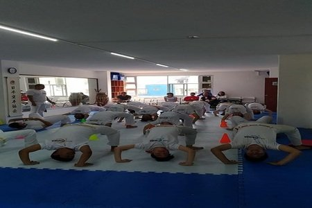 Arte y Capoeira Centro