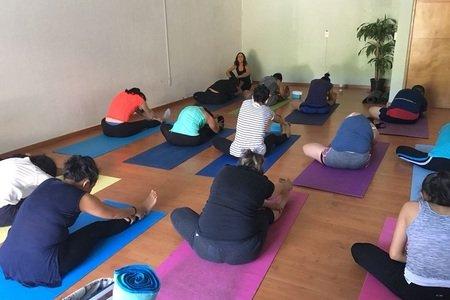 Prana Yoga -